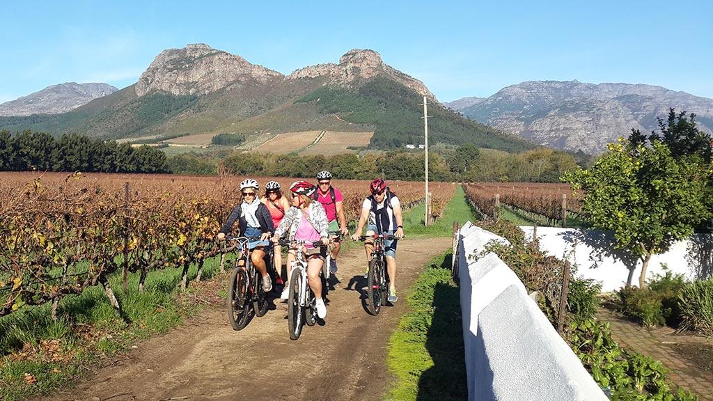 bicycle tour wine tasting
